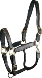 ADJUSTABLE PADDED LEATHER HALTER