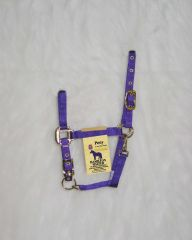 Pony Adjustable Halter W/snap - Purple