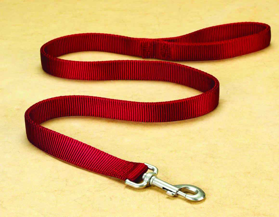"1"" Deluxe Double Loop Nylon Lead w/swivel snap - Red (4')"