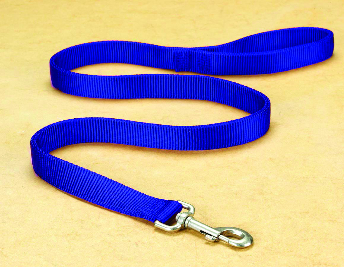 "1"" Deluxe Double Loop Nylon Lead w/swivel snap - Blue (4')"