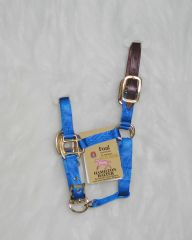 Foal Adjustable Halter W/leather Head Poll - Blue
