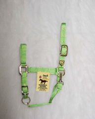 "1"" Adjustable Halter W/snap - Lime - Small"