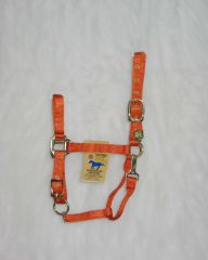 "1"" Adjustable Halter W/snap - Mango - Average"