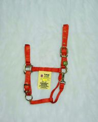 "1"" Adjustable Halter W/snap - Mango - Large"