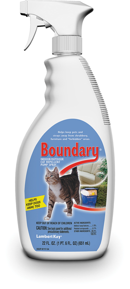 Boundary Cat Pump 22oz