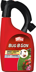BUG B GONE MAX INSECT KILLER READY TO USE