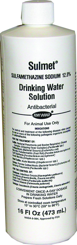 Sulmet Water Solution   16 oz