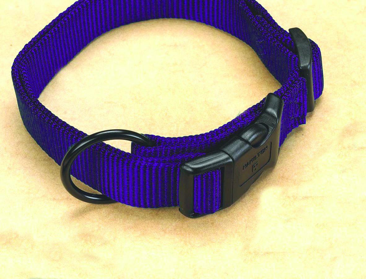 "1"" Fits All Adjustable Nylon Collar - Hot Purple 18-26"