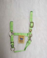 "1"" Adjustable Halter W/snap - Lime - Average"