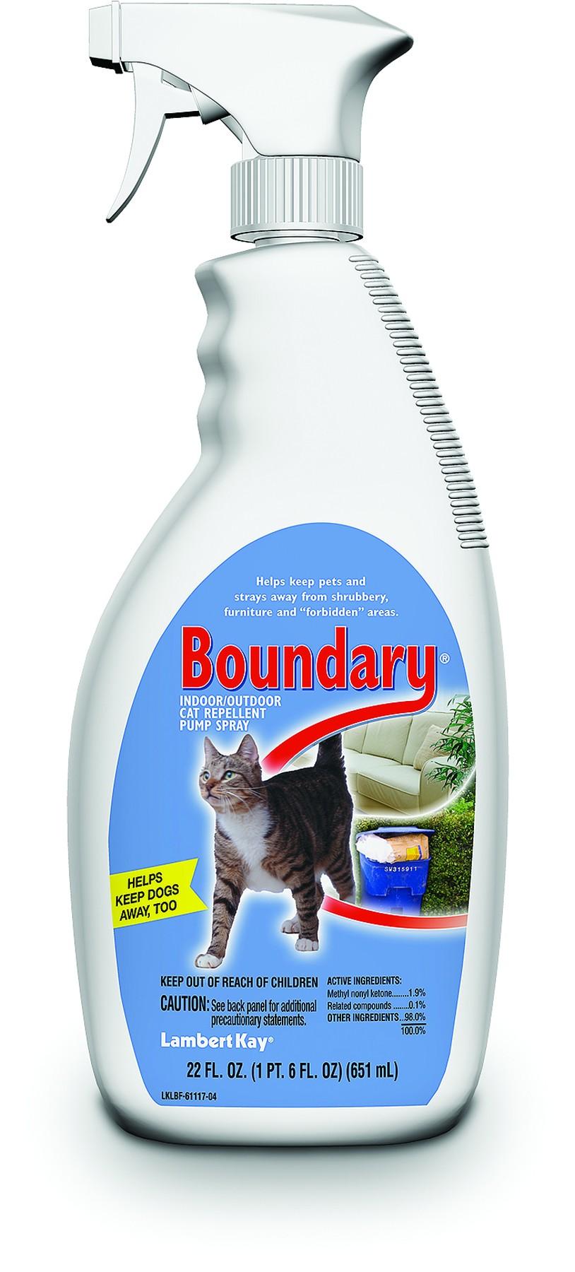 Boundary Cat Pump 22oz