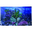 3D AQUARIUM BACKGROUND
