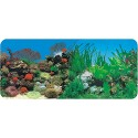 CORAL ANEMONE & FRESHWATER PLANTED BACKGROUND