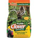 ProVide Clover & Chickory Forage 4 lb