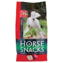 APPLE HORSE SNACKS