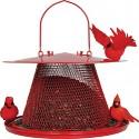 Cardinal No/No Feeder Red