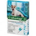 ADVANTAGE 2 DOG TEAL