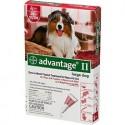 ADVANTAGE 2 DOG RED