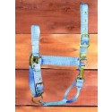 "1"" Adjustable Halter W/snap - Berry - Small"