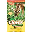 ProVide Clover Food Plot with Chickory 16 lb